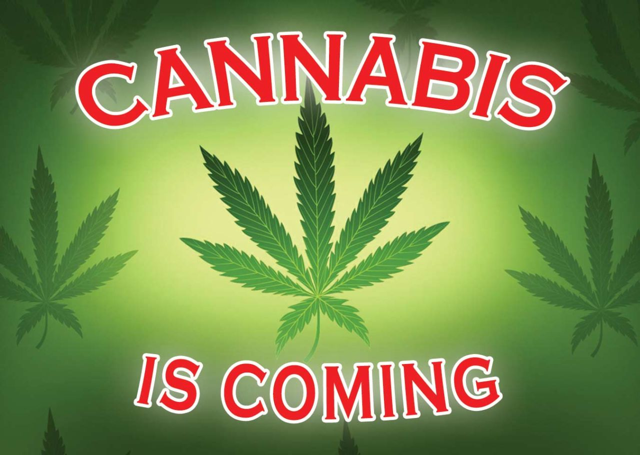 Cannabis Is Coming